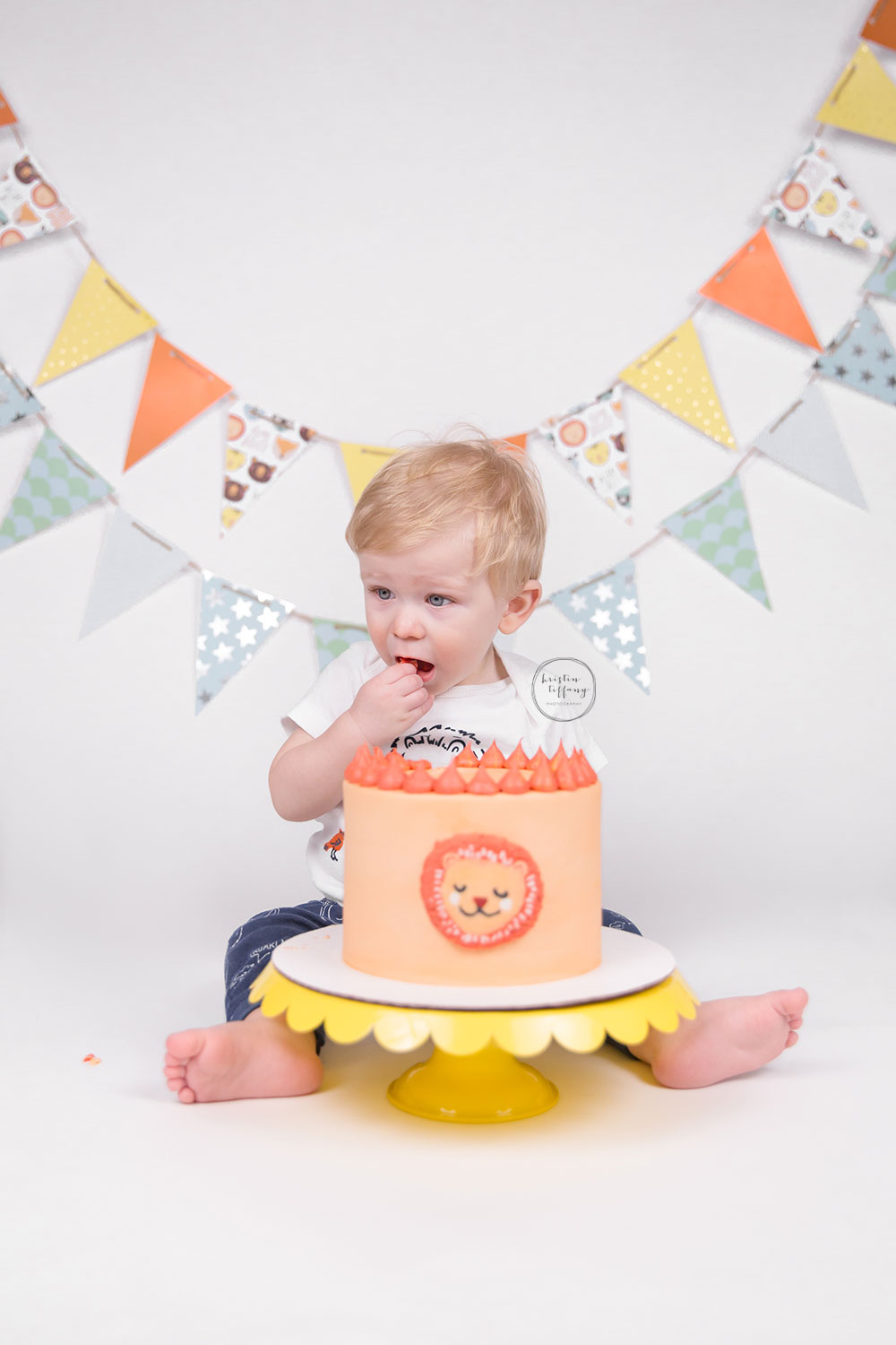 a photo from a lion themed cake smash session