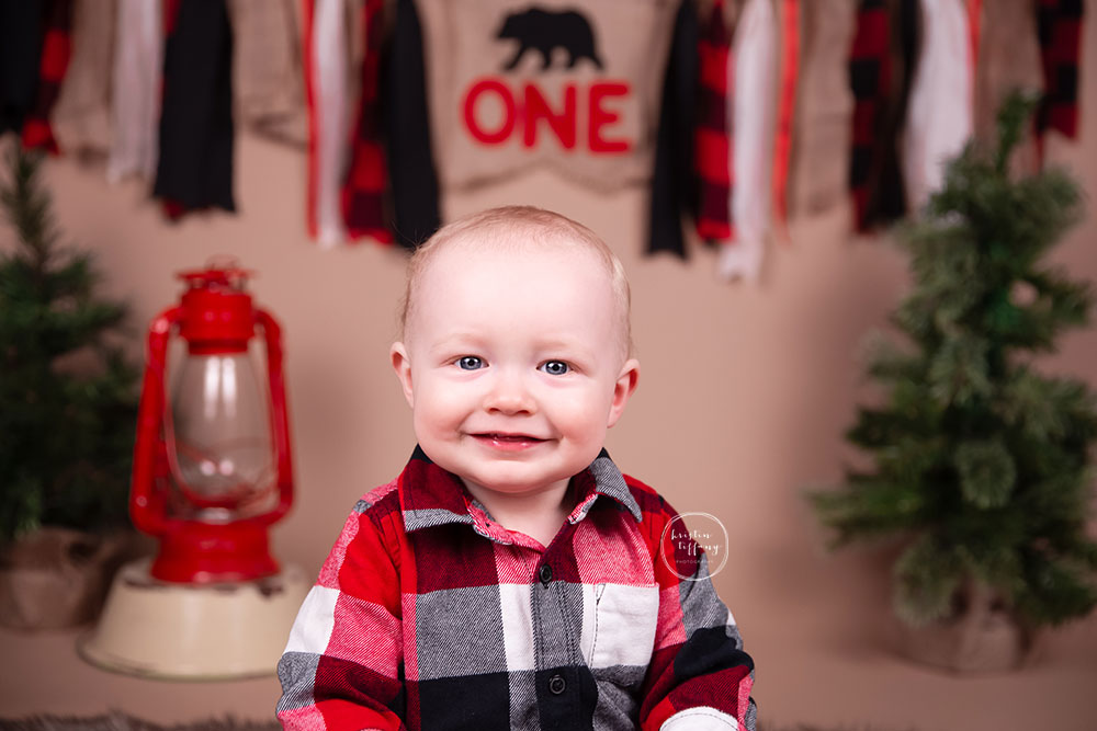 a photo of a baby boy at a one year photoshoot