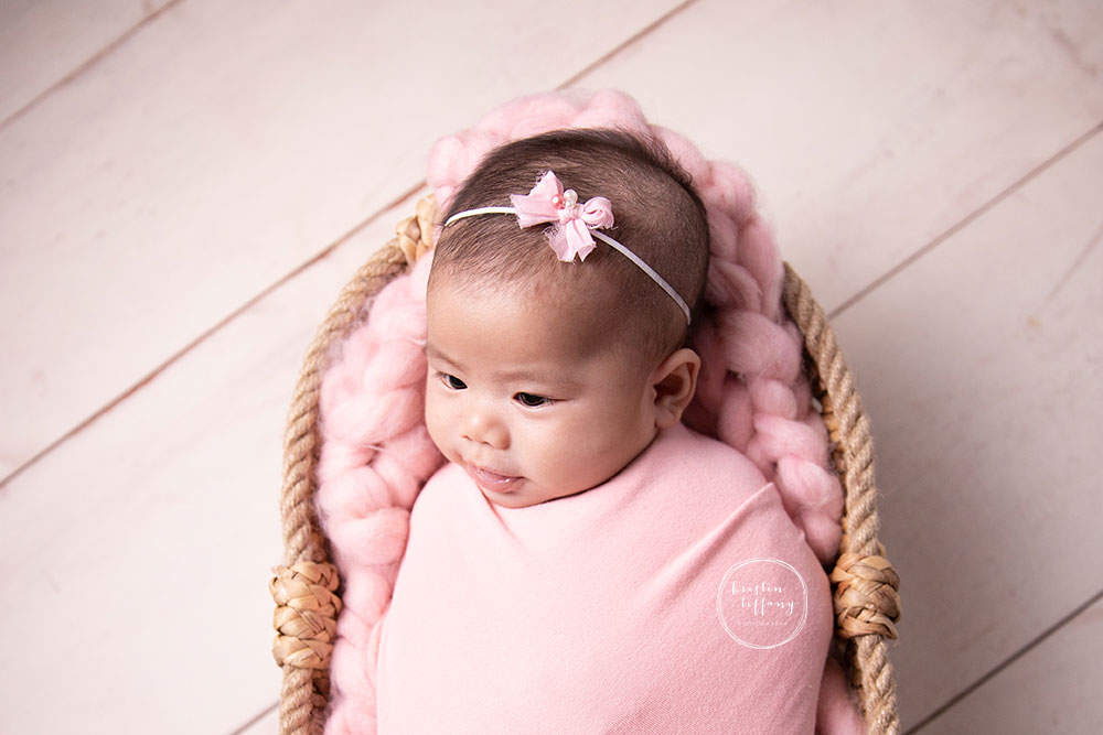 a photo of a baby girl at her photo session