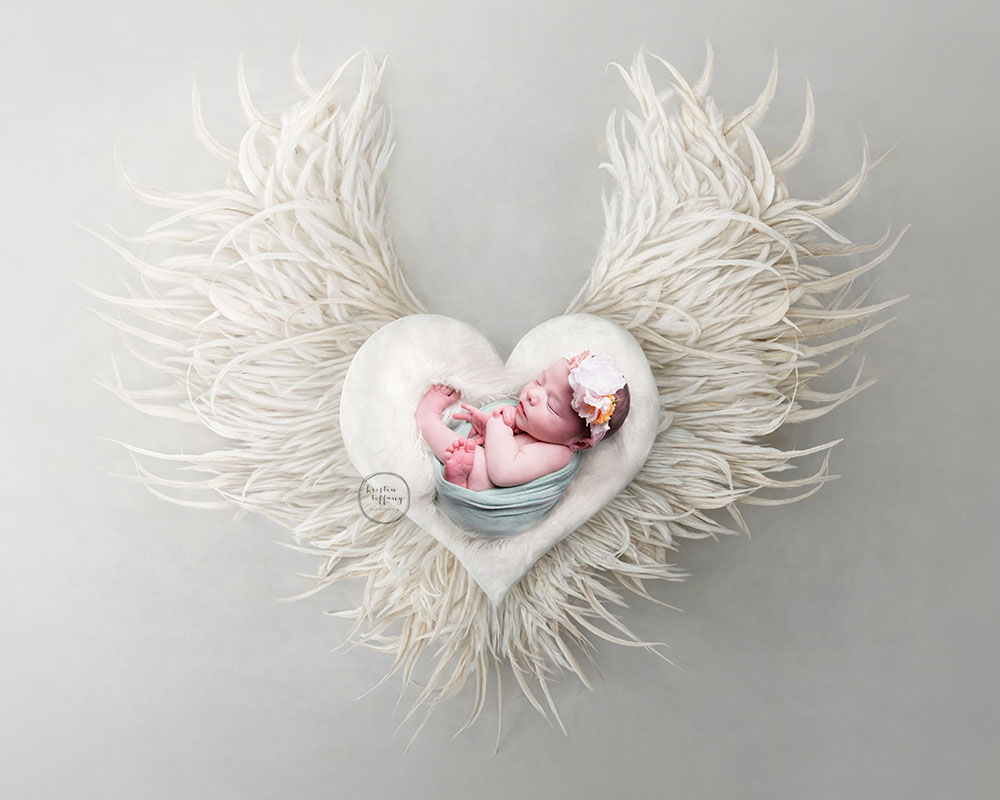a photo of a baby girl at her newborn photoshoot