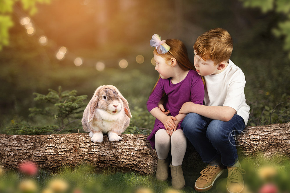 a photo by Kristin Tiffany Photography of kids with a bunny