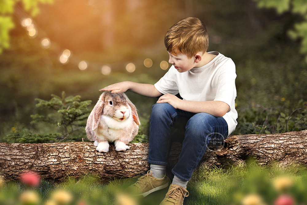 a photo by Kristin Tiffany Photography of a boy with a bunny