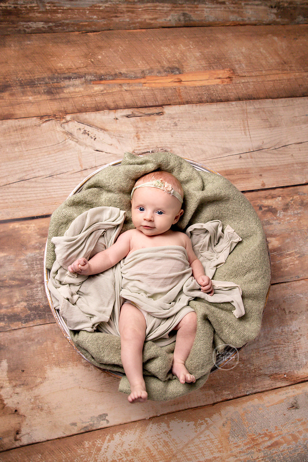 a photo from a baby photoshoot with Kristin Tiffany Photography